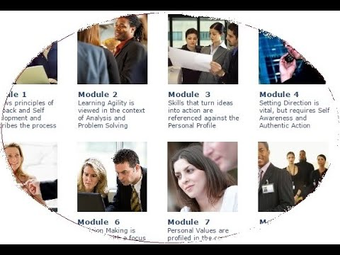 Online Executive Coaching - Leadership Skills Training   Manager Leader Course (Tailored Content)