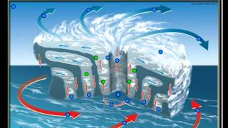 Doorsnede van een orkaan : oefening voor aardrijkskunde : luchtbewegingen in een tropische cycloon
