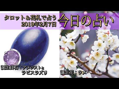 【今日の占い】2019年2月7日の占い【タロット&花札】