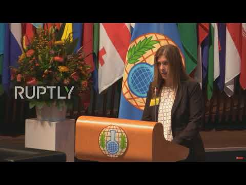 Netherlands: 96% world's chemical weapons destroyed, hails OPCW