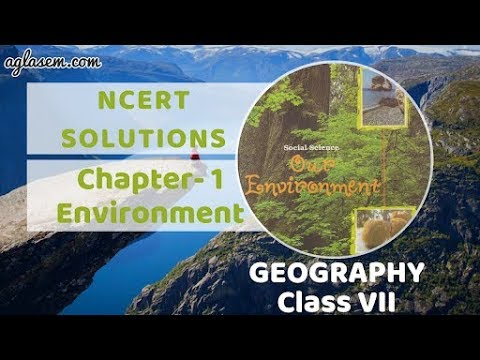NCERT Solutions for Class 7 Social Science (Geography-Our