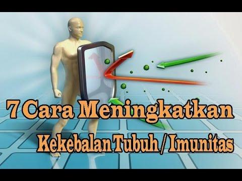 7 Cara Meningkatkan Kekebalan Tubuh Sistem Imun
