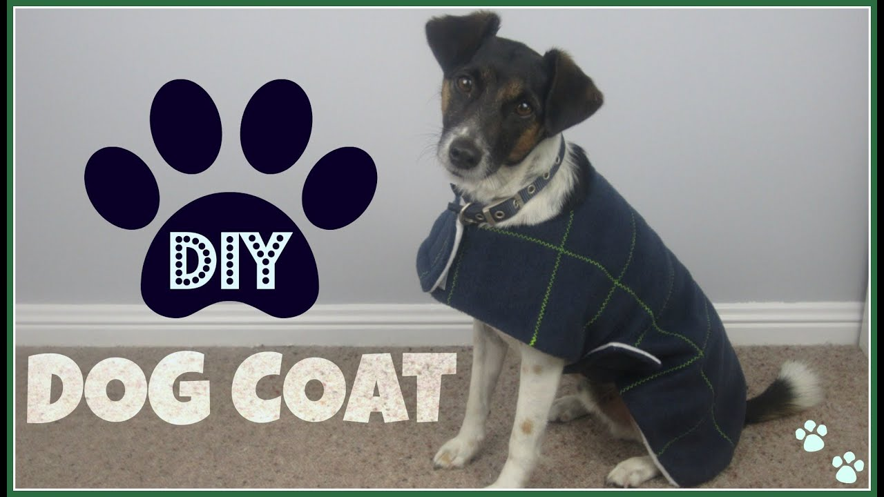 Step by Step Sewing  DIY Dog Coat   YouTube  Step by Step Sewing  DIY Dog Coat   YouTube