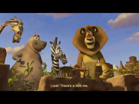 Madagascar 3 (happy birthday part)