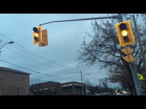 Crossing At The Traffic Lights At Pharmacy Avenue