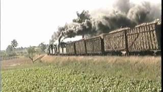 Plantation Steam in Cuba
