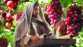 THẦY LÀ CÂY NHO CHÚNG CON LÀ NHÁNH