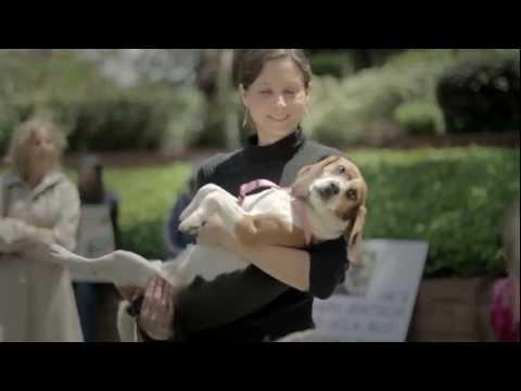 World Week For Animals In Laboratories 2012 Los Angeles