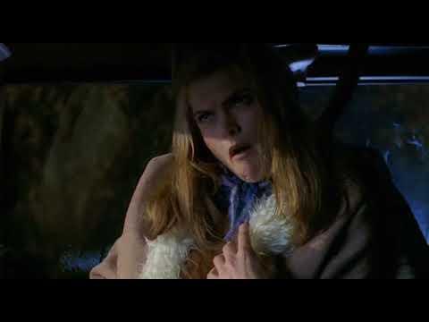 Sam u kući 4 (2002)