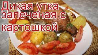 Рецепты из утки - как приготовить утку дикую пошаговый рецепт - Дикая утка запеченая с картошкой