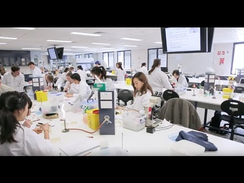 Study science at University of Sydney