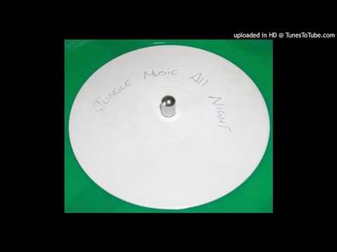 Unknown Artist - Jungle Music All Night (Mix 1)