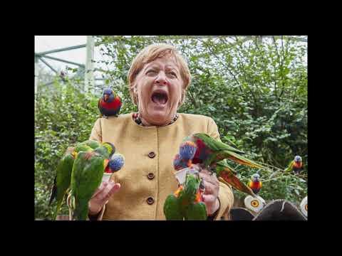 La photo de la semaine : Le cri d'Angela Merkel dans un parc animalier