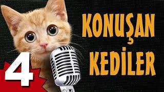 Konuşan Kediler 4 - En Komik Kedi Videoları