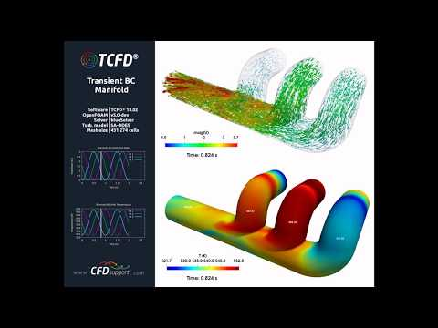TCFD® Tutorial Manifold Transient BC Velocity Temperature