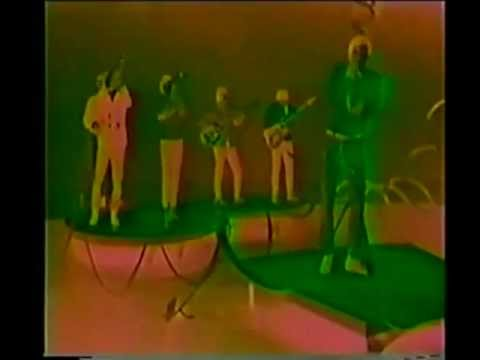 John Fred And His Playboy Band - Judy In Disguise.flv