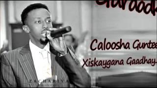 Awale Adan┇Gujada Kalgacaylka ᴴᴰ 2016 ┇ Lyrics