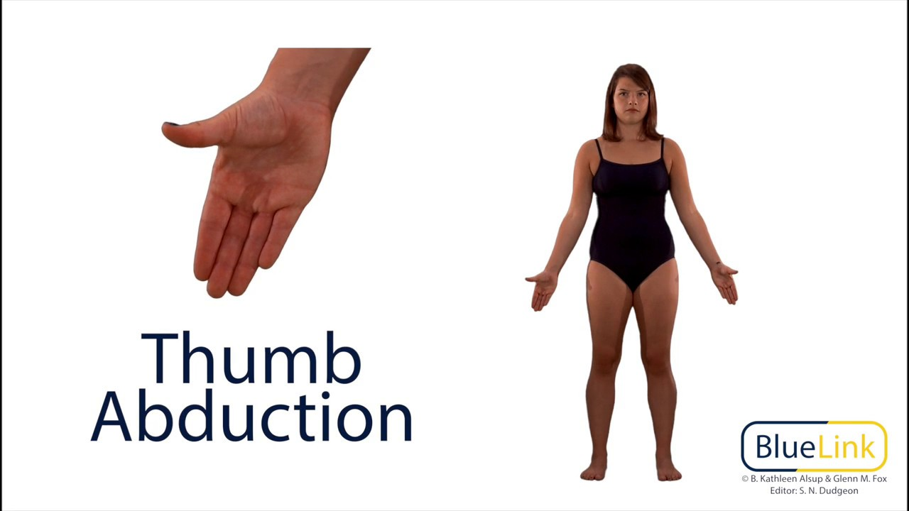 Thumb Abduction Adduction Youtube