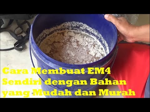 Cara Membuat EM4 Sendiri dengan Bahan yang Mudah dan Murah Tahap I [EM1 dan EM2]