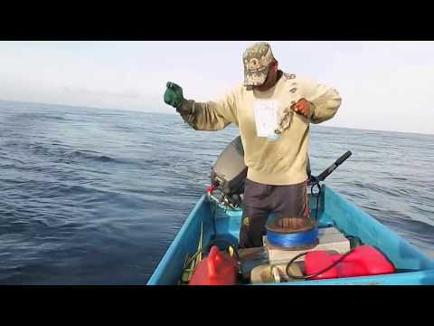 Tuna Fisherman (Handline)