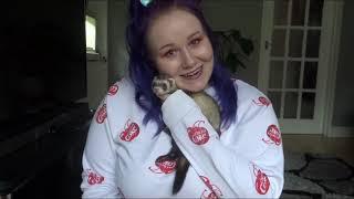 Why female ferrets NEED jill jabs! | Dook Souls