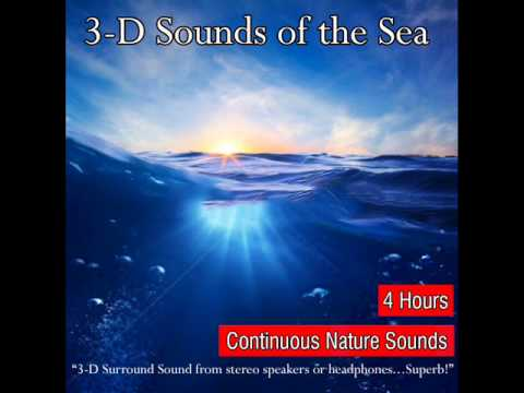 Amazing Natural Sounds of the Sea Recorded in 3D Surround Sound