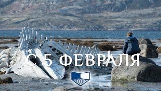 «Левиафан» — фильм в СИНЕМА ПАРК