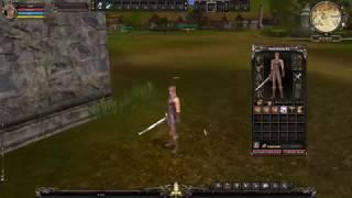 Shaiya Lands - Fast Sell, Enhant/Link/Extract & Craft/ Rec Rune