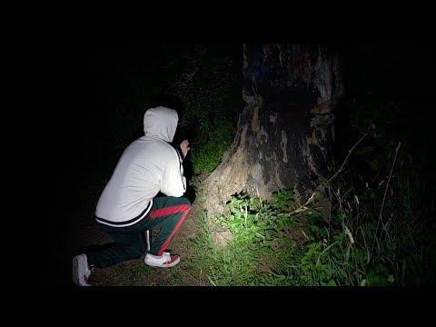 he begged the devil for his soul back... (devils tree)