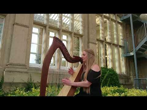 Thinking Out Loud - Ed Sheeran (Harp Cover) at Stoke Rochford Hall