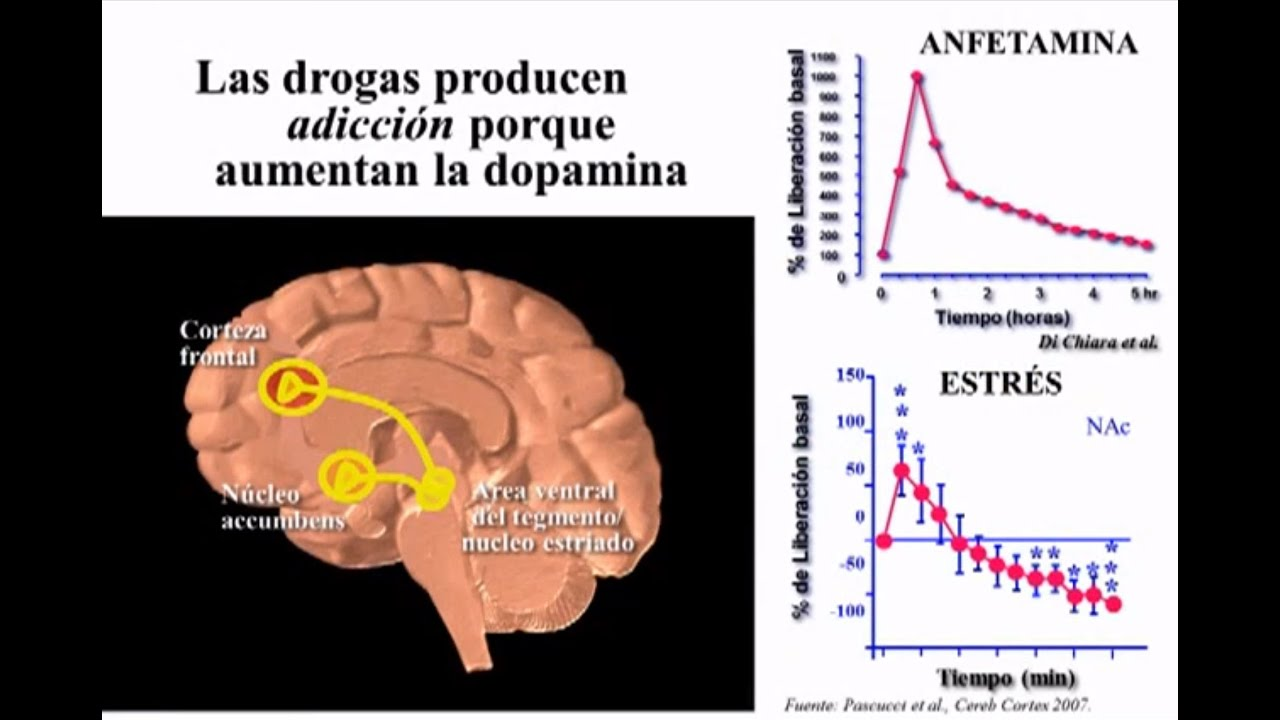 Baja produccion de dopamina