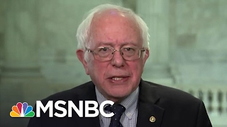 Bernie Sanders Responds To Town Hall Postponement | All In | MSNBC