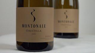 Masterwein • Spitzenwein Juli 2020: Montonale Orestilla 2018
