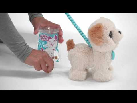 f2967ad2db64 Smyths Toys - Pax, My Poopin' Pup Toy - YouTube