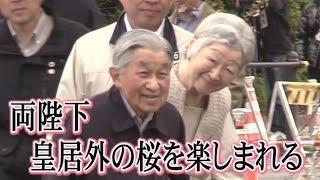 天皇、皇后両陛下は7日朝、お忍びで皇居外周を散策し、桜の花見を楽し...