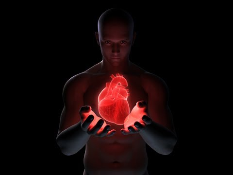Cardiovascular System: Live Lecture The Heart