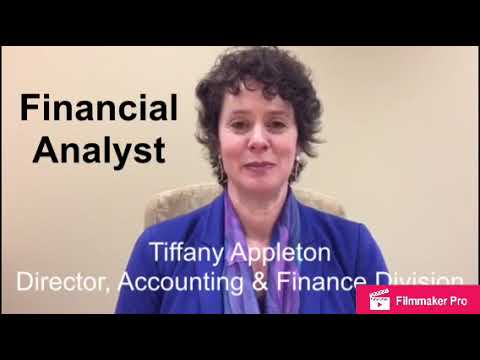 DIRECT HIRE: Financial Analyst