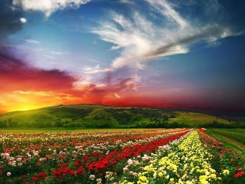 ♫♫♫ New Art of Relax ♥ Sunset Relax ♥ 40+ min Ultra HD (4K) Slideshow ♥ Relax Music