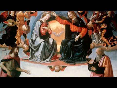 Immaculate Conception Novena 8: Honor Thy Mother