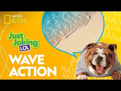 Wave Action | Just Joking—LOL
