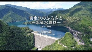 東京水のふるさと―水道水源林― (30秒編)
