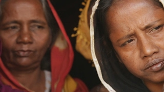 Forced into exile  The plight of the Rohingyas