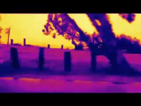 kalifornia dreamin - ostberlinerdisco
