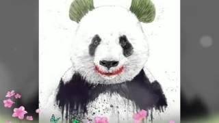 Мой второй фотоколлаж (из картинок с пандами)🐼🐼