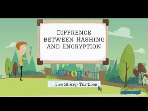 Fundamental difference between Hashing and Encryption algorithms