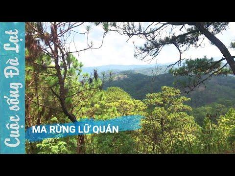 Ma Rừng Lữ Quán một trong những khu nghỉ dưỡng nổi tiếng ở Đà lạt
