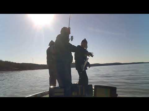Hitting Clinton Lake For Slab Crappie With Father & Son