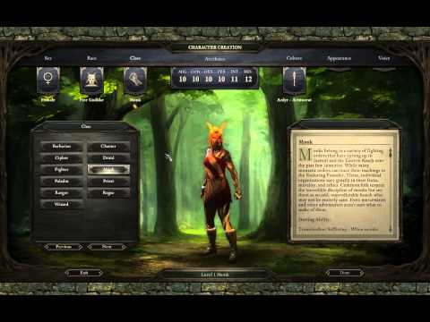 Pillars of Eternity: Path of The Damned Guide