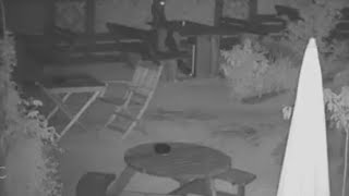 Is This Bar Haunted by a Ghost, or Is It Just the Wind Moving Furniture?