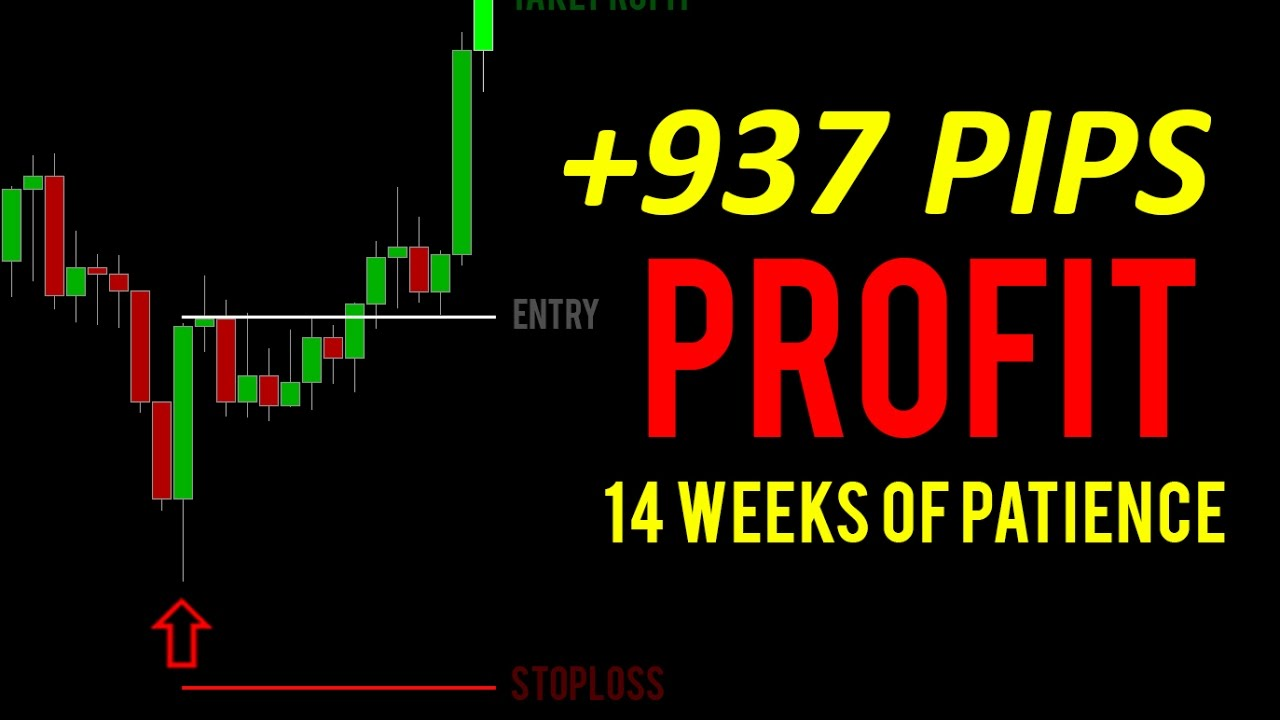 Crazy 937 pips profit live forex trade 14 weeks of patience crazy 937 pips profit live forex trade 14 weeks of patience price action candle pattern entry malvernweather Gallery